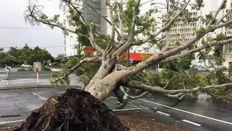 New Zealand gamsung ah Cyclone Debbie in nawkleuleu ~ ZD