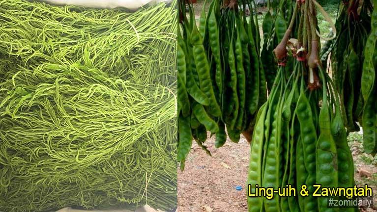Ling-uih teh le Zawngtah gah tungpan thalakna
